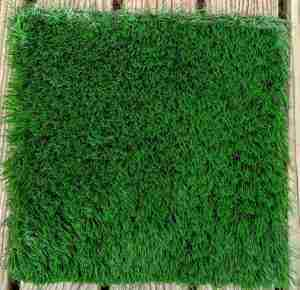 Paradise artificial grass sample top view