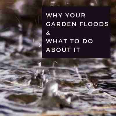 Why your garden floods & What to do about it
