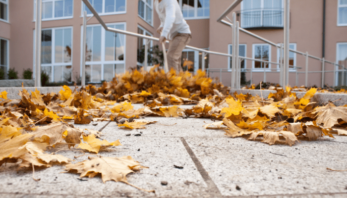 Sweeping leaves off paving