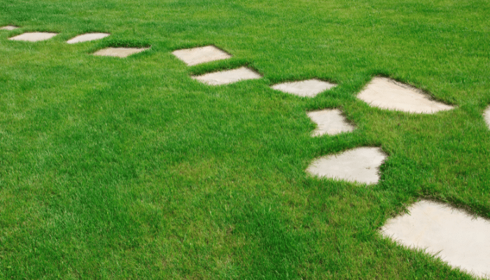 Garden stepping stones made from rough slabs