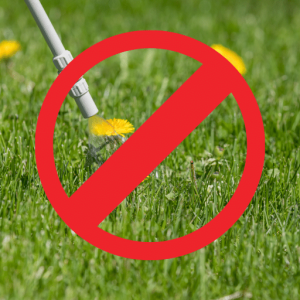 Stopping weeds in artificial grass