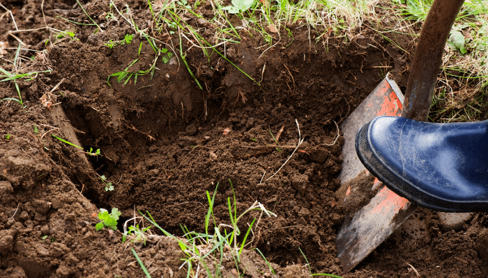 Digging a fence post hole with a spade
