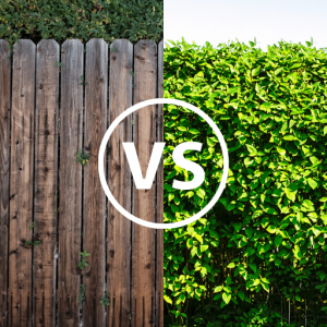Garden fencing vs hedging: which one is best