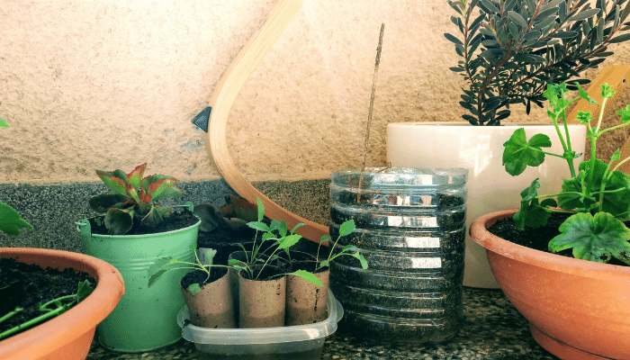 Recycled materials used as pots in a garden