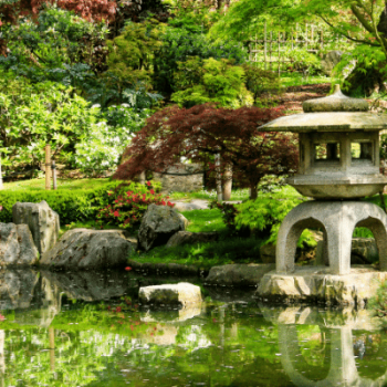 Japanese garden with pond and shrine